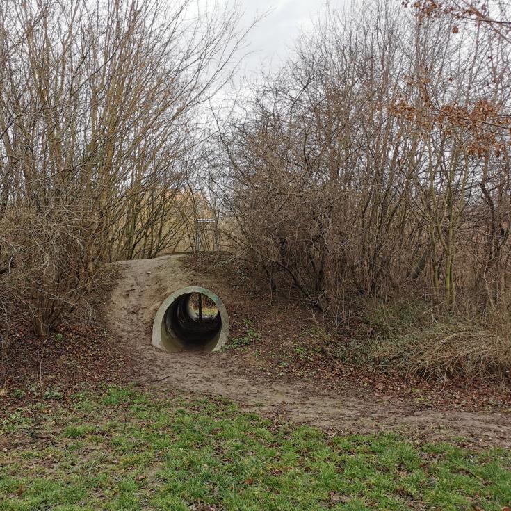 Bild 5: Akazienweg