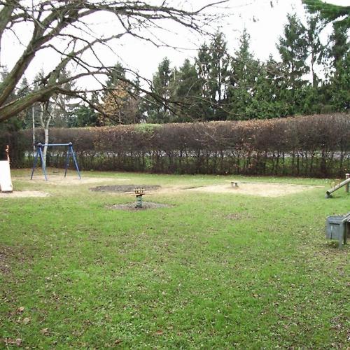 Bild 1: An der Baumschule