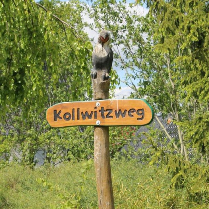 Bild 6: Dschungelspielplatz Kollwitzweg