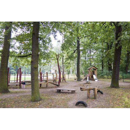 Bild 2: Hexenwald
