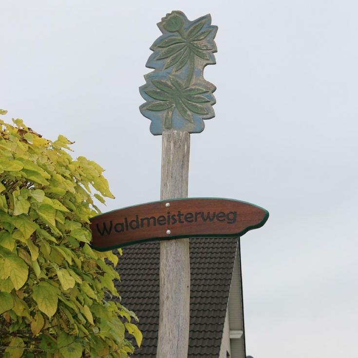 Bild 10: Waldmeisterweg
